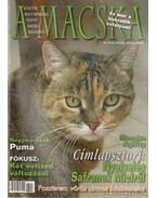 A Macska 2006. május-június (újság)