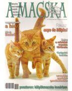 A Macska 2006. július-augusztus (újság)