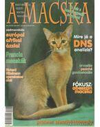 A Macska 2007. július-augusztus (újság)