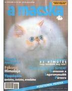A Macska 2001. július-augusztus (újság)