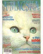 A Macska 2007. szeptember-október (újság)