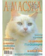 A Macska 2007. november-december (újság)