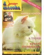 A Macska 1996. március (újság)