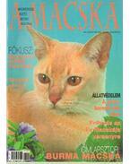 A Macska 2003. július-augusztus (újság)
