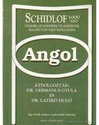 Angol - Schidlof 1000 szó módszere