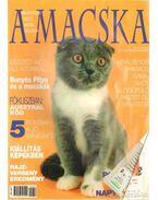 A Macska 2002. november-december ( újság)