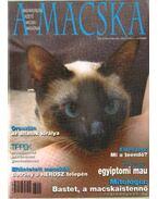A Macska 2005. szeptember-október ( újság)