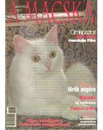 A Macska 2005. május-június (újság)