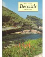 What to see in Boscastle