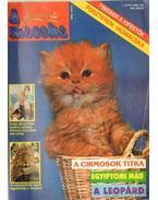A Macska 1996. május (újság)