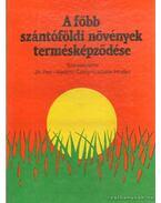 A főbb szántóföldi növények termésképződése