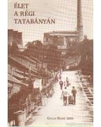 Élet a régi Tatabányán