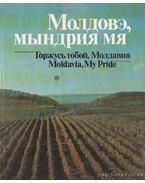 Moldávia, büszke vagyok rád! (orosz nyelvű)