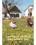 Zala megye falvainak képeskönyve 1989.