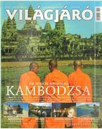 Világjáró 2003/11. november