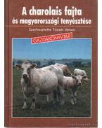 A charolais fajta és magyarországi tenyésztése