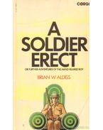 A soldier erect