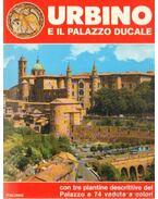Urbino - E il palazzo ducale