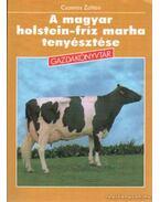 A magyar holstein-fríz marha tenyésztése