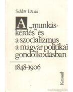 A munkáskérdés és a szocializmu a magyar politikai gondolkodásban 1848-1906