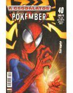 A Csodálatos Pókember 2006/10. 40. szám