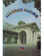 Szarvasi Mozaik 1994