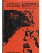 A világ szarvasmarhafajtái, értékelésük és nemesítésük