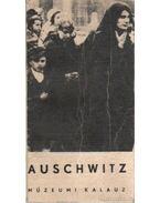 Auschwitz múzeumi kalauz