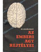 Az emberi agy rejtélyei