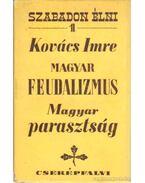 Magyar feudalizmus - Magyar parasztság