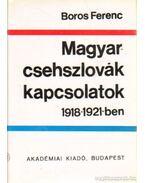 Magyar-csehszlovák kapcsolatok 1918-1921-ben