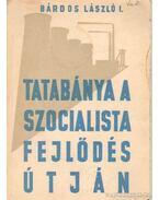 Tatabánya a szocialista fejlődés útján