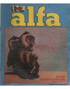 Alfa 1981. december
