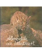 Álmodik az állatkert