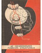 Az idegrendszer, funkciós strukturája
