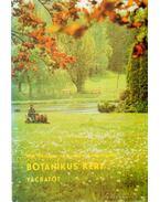 Botanikus kert - Vácrátót
