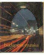 Budapesti éjszaka