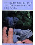 Kennzeichen und Mauser Europäischer Singvögel (Az európai énekesmadarak ismertető jegyei és tollváltása)