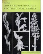 Limodorum - Epipogium - Neottia - Corallorhiza (1967)