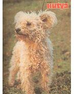Kutya 1989. 52. évf. (teljes)