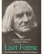 Liszt Ferenc élete képekben és dokumentumokban - László Zsigmond, Mátéka Béla