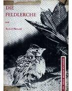 Die Feldlerche (A búbos pacsirta)-1963