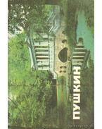 Puskin. Múzeumok és parkok (orosz nyelvű)