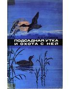 A csalikacsa és a vele való vadászat (Подсадная утка и охота с ней)
