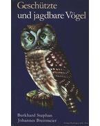 Geschützte und jagdbare Vögel 1980.