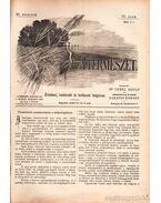 A természet III. évfolyam IX. szám 1900