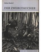 Der Zwergtaucher (A kis vöcsök)