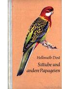 Sittiche und andere Papageien (Vörösfarkú és másmilyen papagájok)