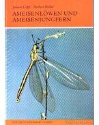 Ameisenlöwen und Ameisenjungfern (A hangyaleső-félék)