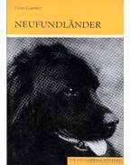Neufundlander (Újfundlandi) 1981